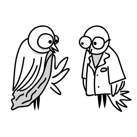 psy-owl